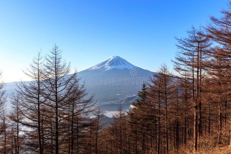 Berg Fuji im Winter stockfotos