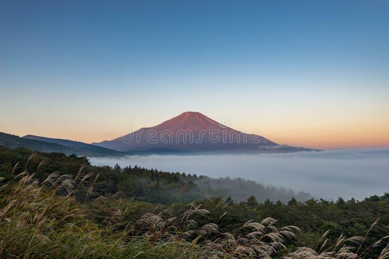 Berg Fuji utan snöräkning maximumet och havet av mist under i tidig höst arkivfoto