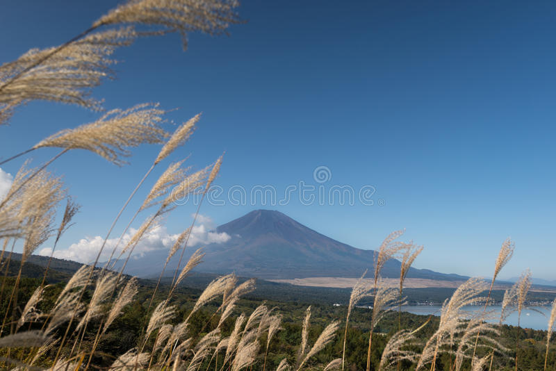 Berg Fuji zonder sneeuw royalty-vrije stock foto