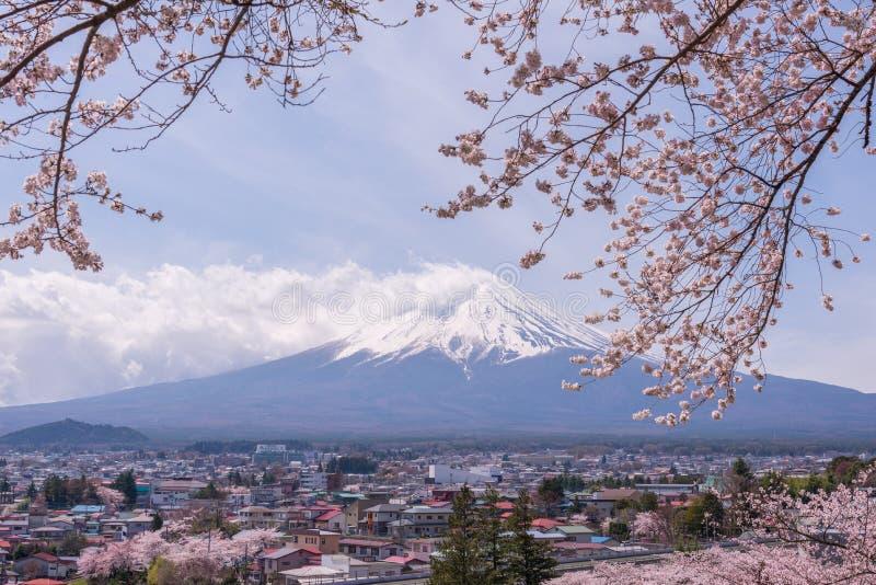 Berg Fujiyama, en anmärkningsvärd landfläck av Japan i en molnig dag med den körsbärsröda blomningen eller Sakura i ramen Bilden  arkivfoton