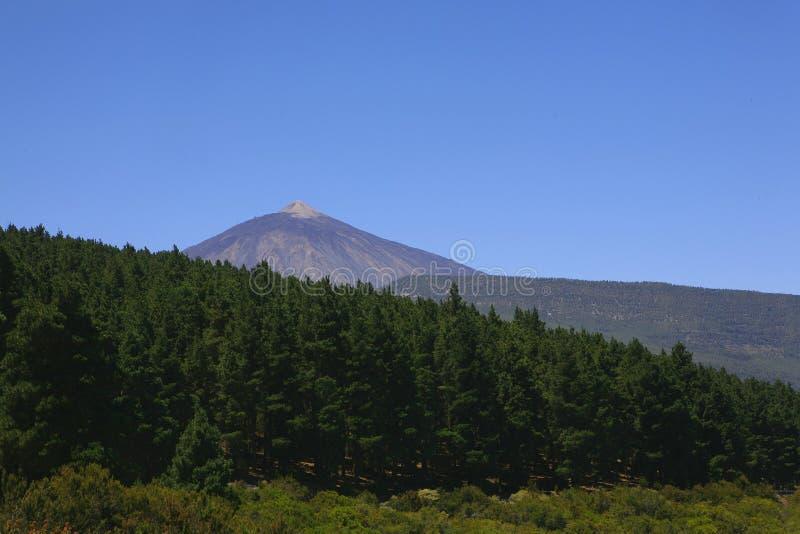 Berg Gr Teide in het eiland van Tenerife royalty-vrije stock foto's