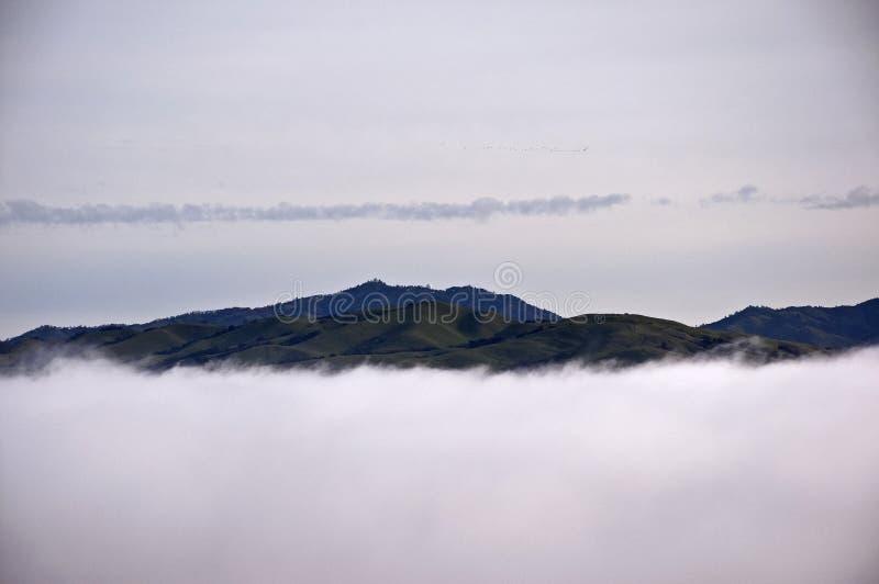 Berg Hamilton in den Wolken stockbilder