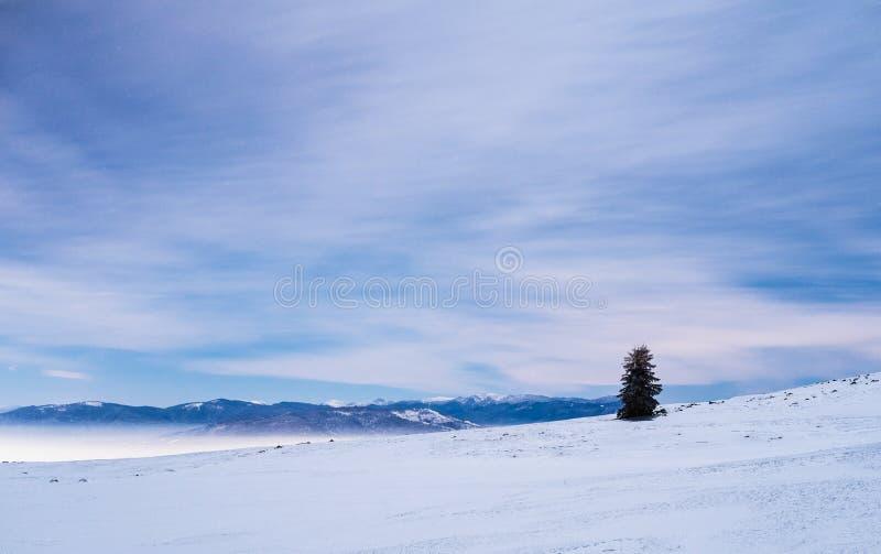 Berg in het landschap van de de winternacht royalty-vrije stock fotografie