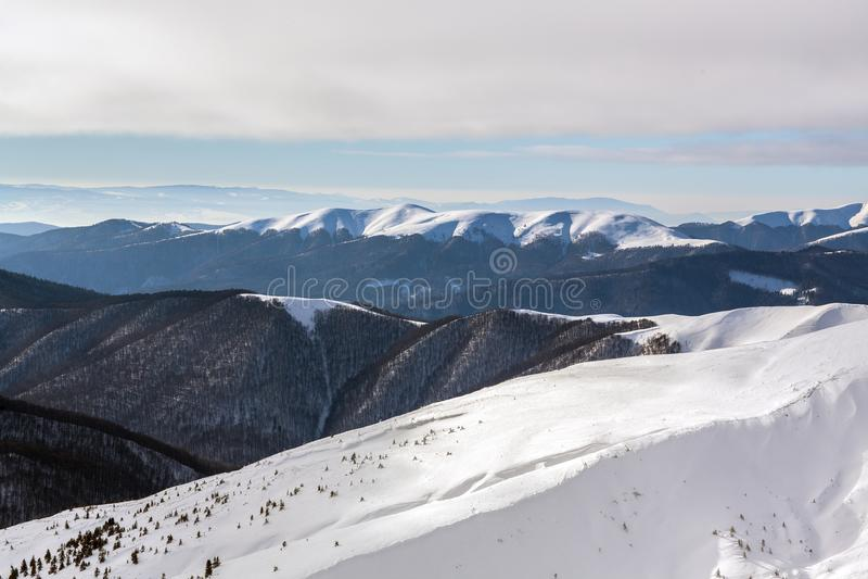 Berg i Carpathiansna royaltyfri fotografi