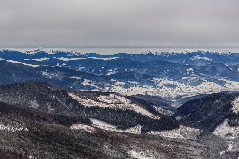 Berg i Carpathiansna royaltyfria foton