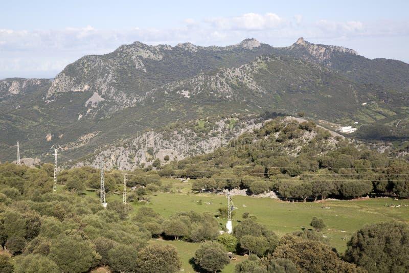 Berg i den Grazalema nationalparken arkivbild