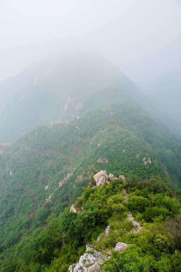 Berg i dimman royaltyfri fotografi