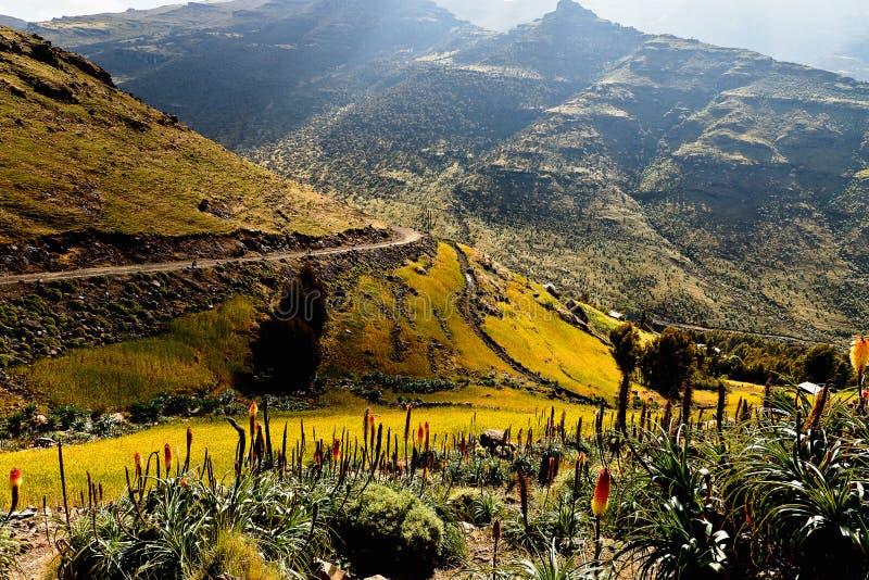 Berg i Etiopien. arkivfoto