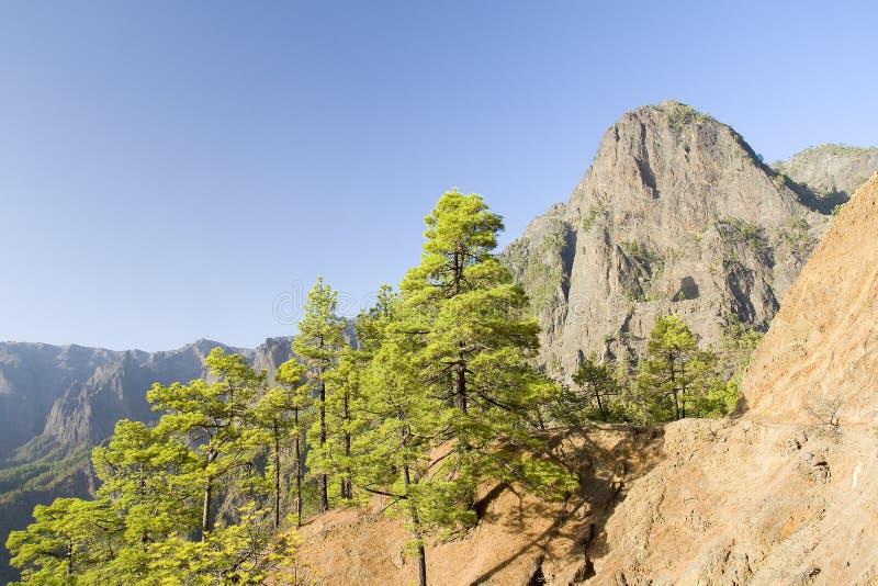 Berg i La Palma royaltyfria foton