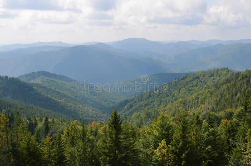 Berg i ogenomskinligheten, träd i förgrunden, molnig himmel royaltyfri bild