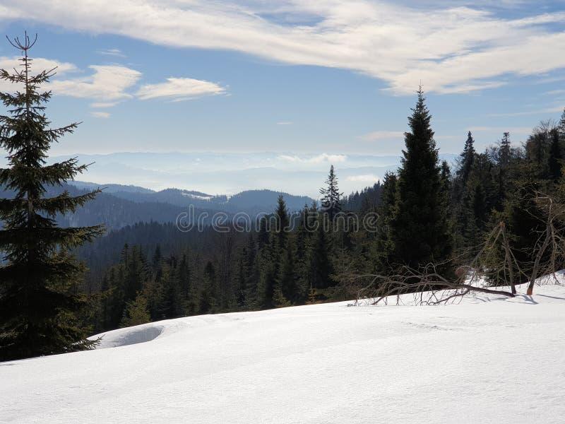 Berg i Polen vintertid fotografering för bildbyråer