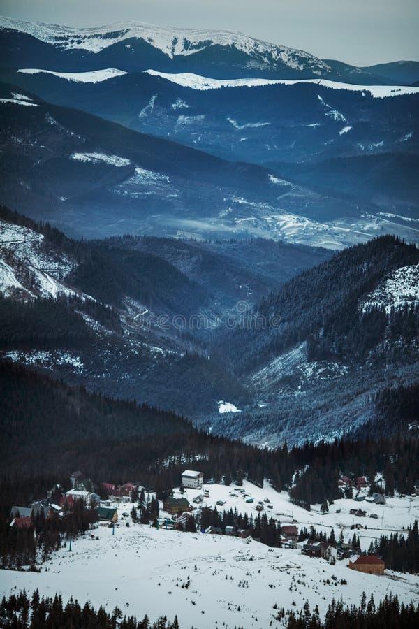 Berg i vinter, Carpathians, Ukraina royaltyfri bild