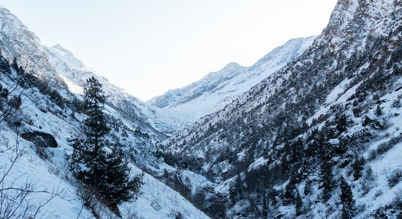 Berg i vinterpanorama royaltyfria foton