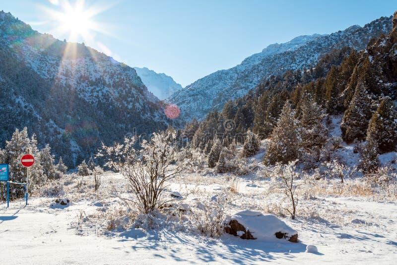 Berg i vinterpanorama royaltyfria bilder