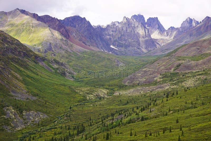 Berg i Yukon arkivfoton