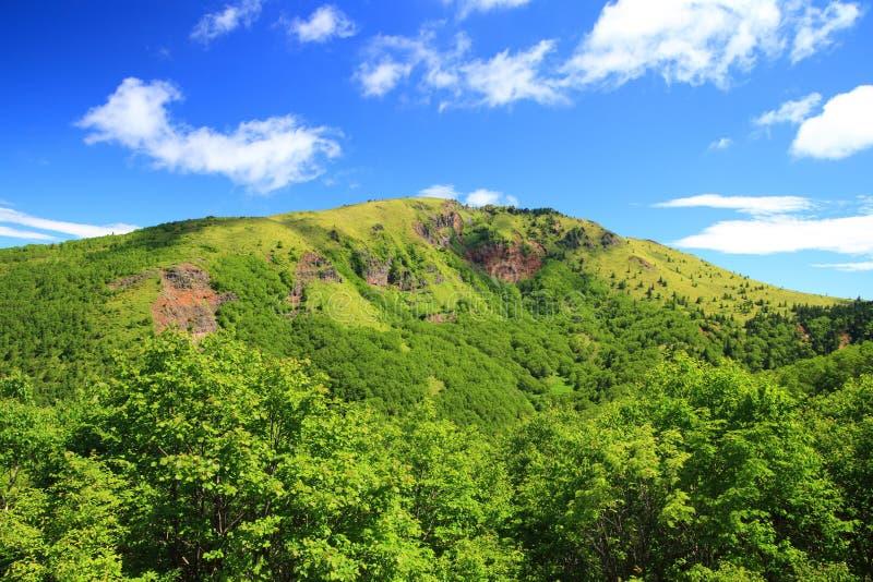 Berg im Sommer lizenzfreies stockbild