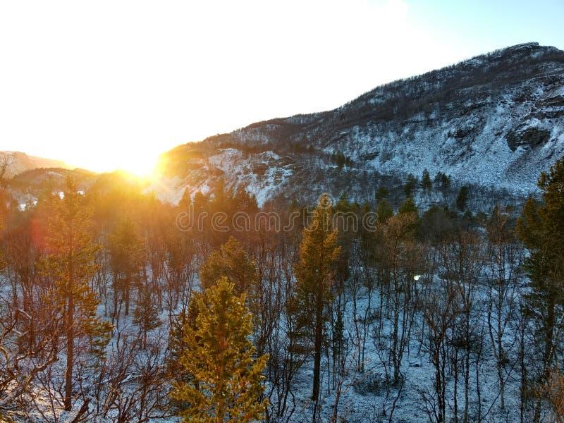 Berg in Kvenvik Norwegen stockfotografie