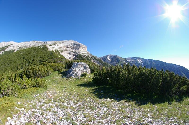 berg landschap stock foto