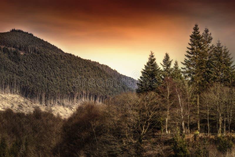 Berg landskap royaltyfria foton