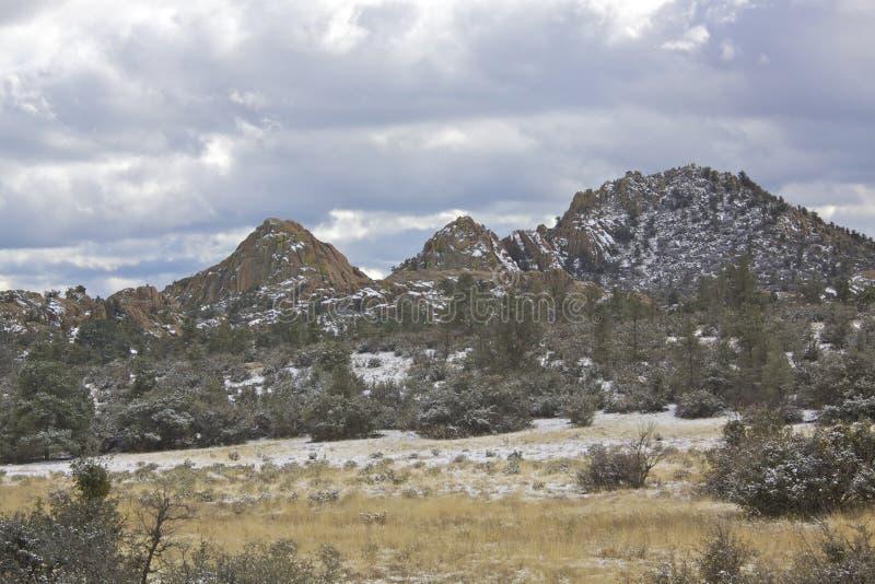 Berg landskap i Snow arkivbild
