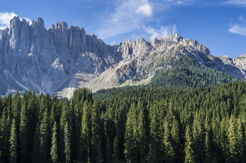Berg Latemar, Dolomiti arkivbild
