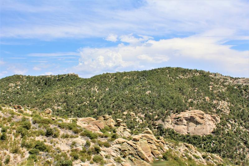 Berg Lemmon, Santa Catalina Mountains, Coronado-staatlicher Wald, Tucson, Arizona, Vereinigte Staaten stockbild