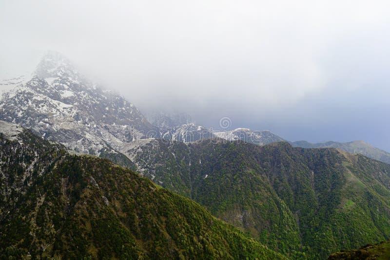 Berg med snö på överkanten och områden med gröna gras och träd royaltyfri fotografi