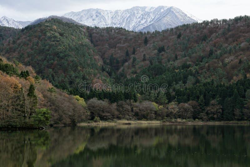 Berg med snön royaltyfri foto