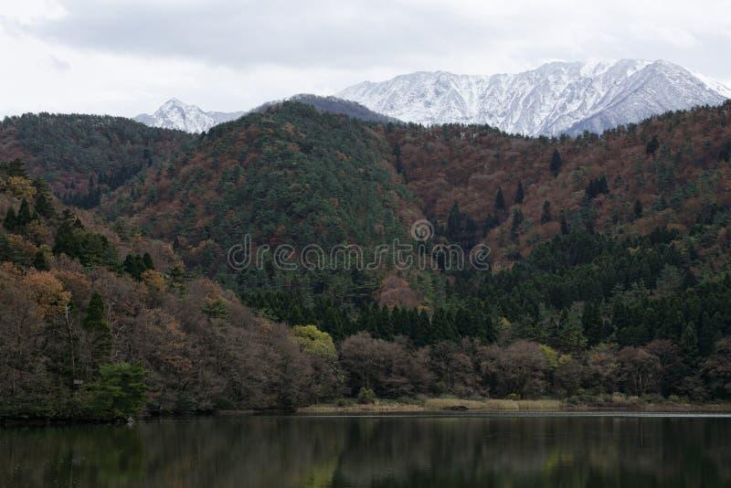 Berg med snön fotografering för bildbyråer