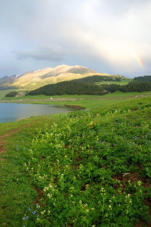 Berg met regenboog royalty-vrije stock afbeeldingen