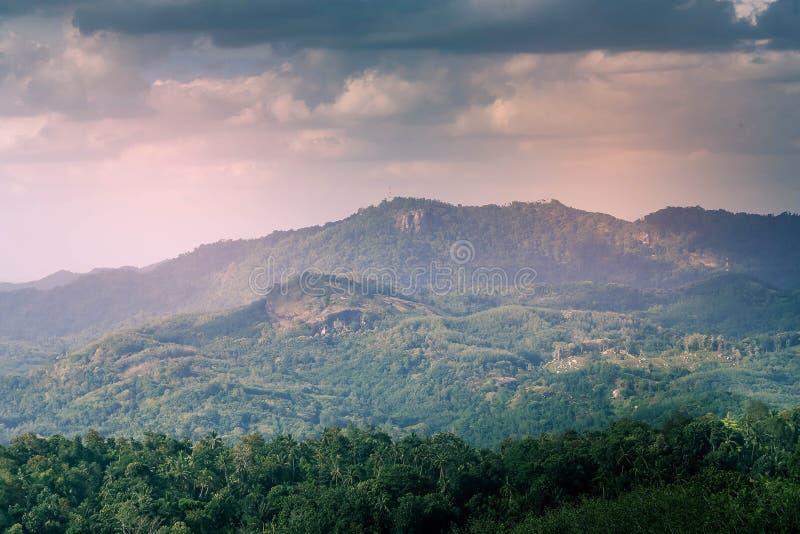 Berg mit Kokosnuss-Bäumen in ihm lizenzfreie stockfotografie