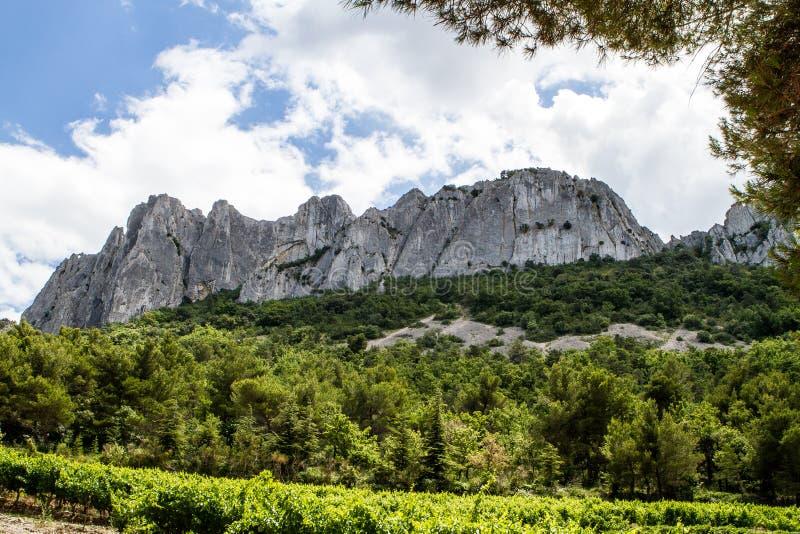 Berg mit Weinberg in der Front, in Provence nannte Les Dentelles stockbild
