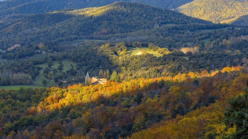 Berg Montseny för en för skog för Beautifal höstbokträd i Spanien arkivfoton