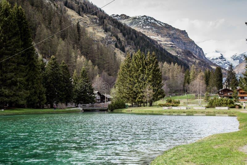 Berg och träd reflekterar i en kall sjö i Gressoney royaltyfria bilder