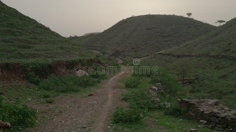 Berg och väg royaltyfri bild