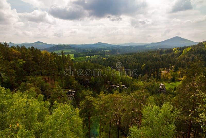 Berg och vaggar i skogen royaltyfria foton