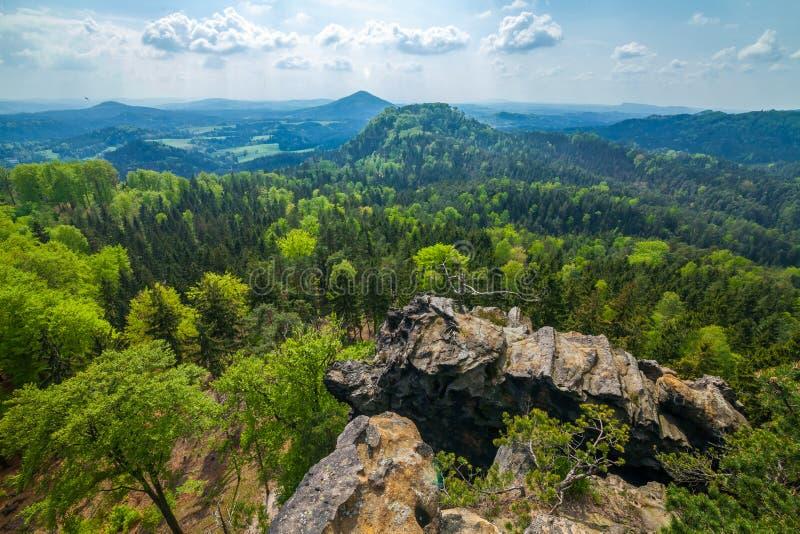 Berg och vaggar i skogen royaltyfri bild