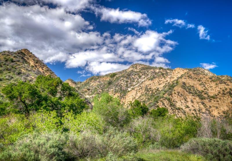 Berg på den Towsley kanjonen i sydliga Kalifornien royaltyfri fotografi