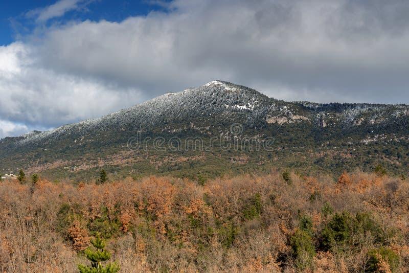 Berg på en vinter, mulen dag Peloponnese, Grekland royaltyfri foto
