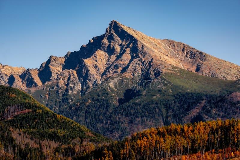 Berg piekkrivan in Hoge Tatras, met mooie de herfstkleur, Slowakije stock afbeeldingen