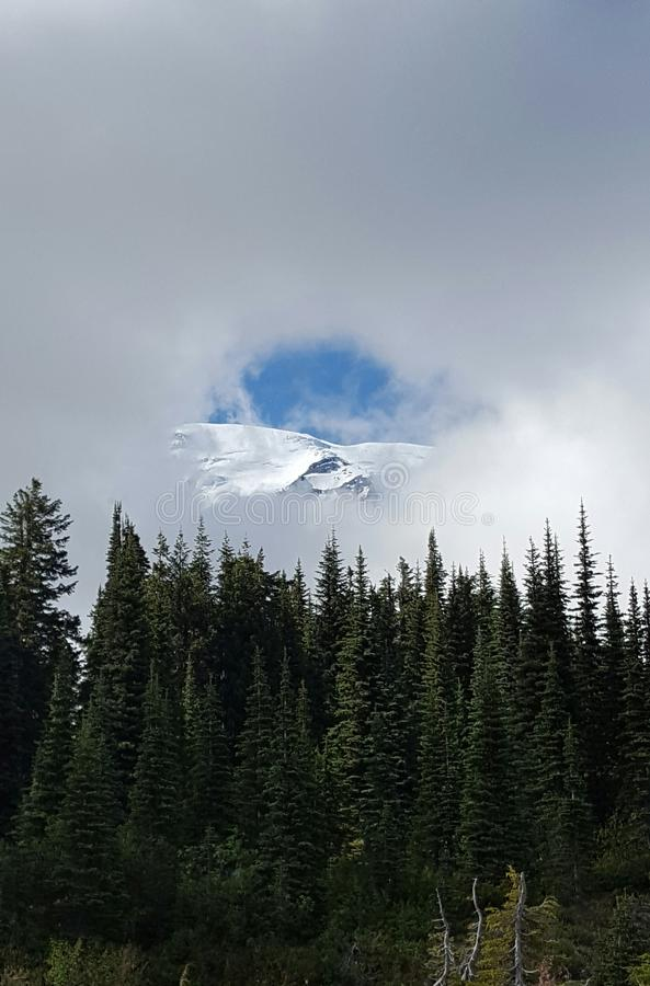 Berg Rainer, Washington State lizenzfreie stockfotos