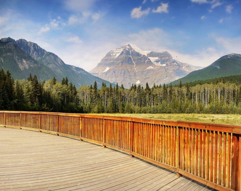 Berg Robson Park Canada stockfotos