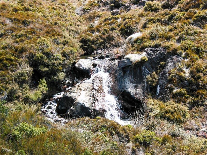Berg Ruapehu und Nationalpark Tongariro, Neuseeland lizenzfreies stockbild
