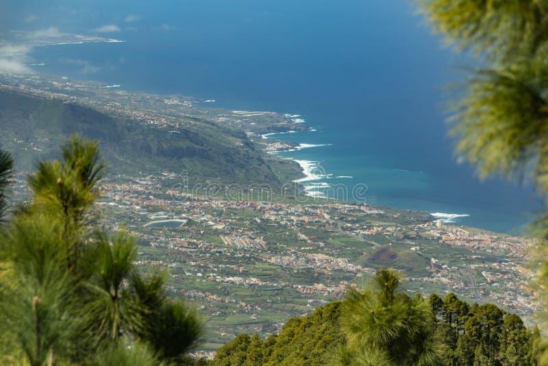 Berg sörjer trädskogen ovanför molnen Panoramautsikt av den La Orotava dalen och linje för norrkust på Tenerife 2000m fotografering för bildbyråer