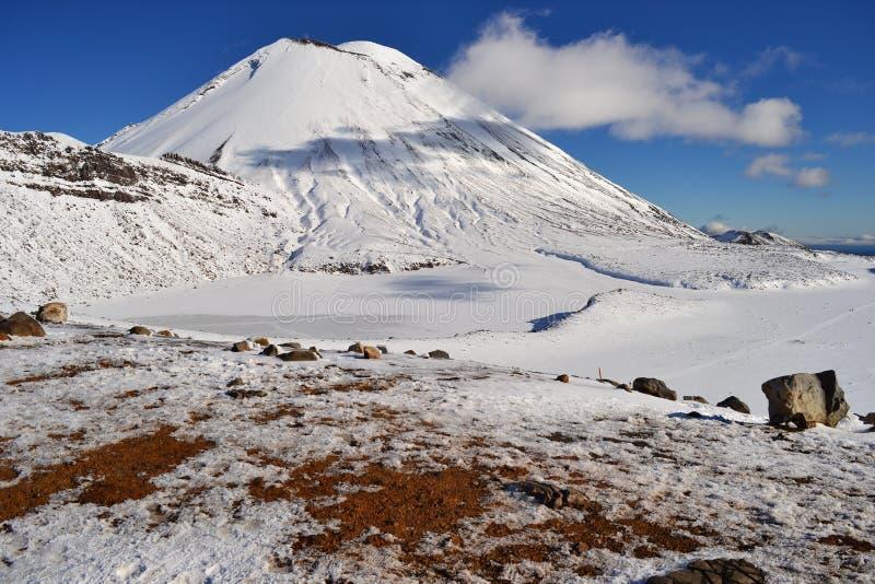 Berg-Schicksal im Schnee, Winterlandschaft in Nationalpark Tongariro stockbild