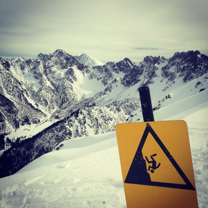 Berg - Schweiz arkivbild