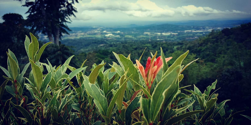 Berg in Semarang lizenzfreies stockbild