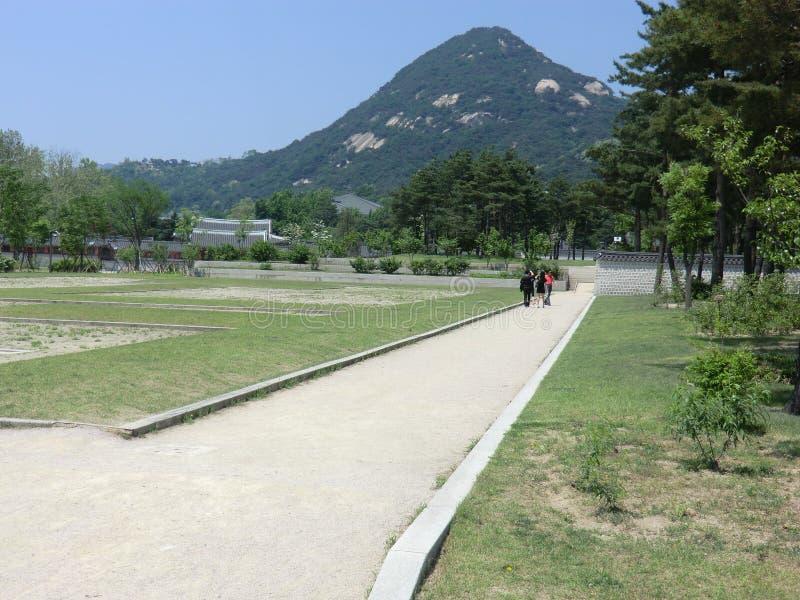 Berg in Seoul, Südkorea stockfotos