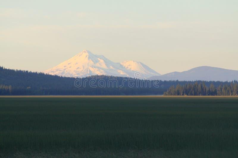 Berg Shasta und Aspen Lake lizenzfreies stockfoto