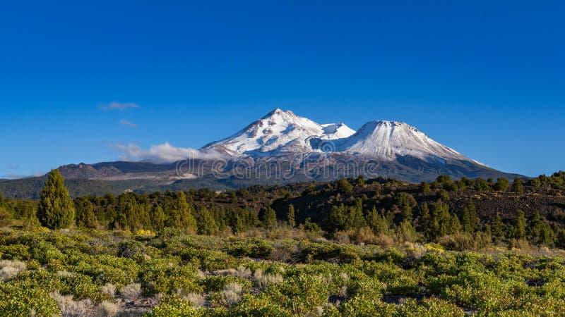 Berg Shasta von Nord-Kalifornien stockbild